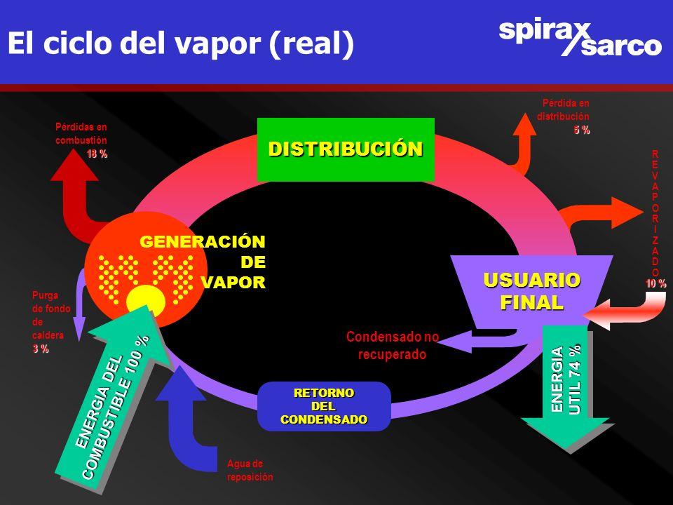 El ciclo del vapor (real)