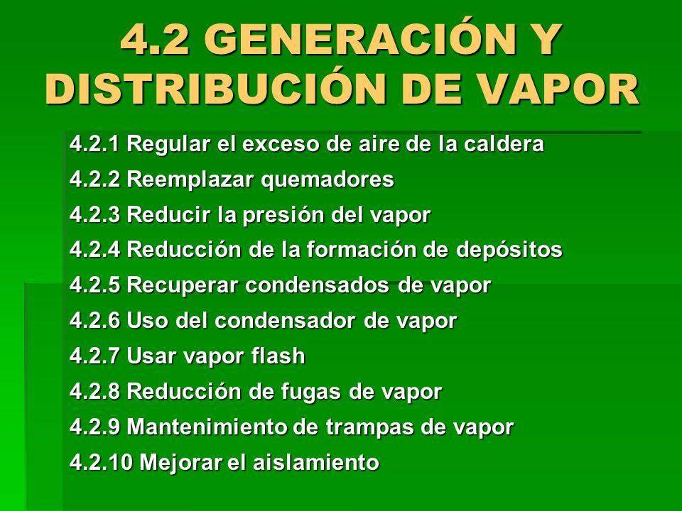 4.2 GENERACIÓN Y DISTRIBUCIÓN DE VAPOR