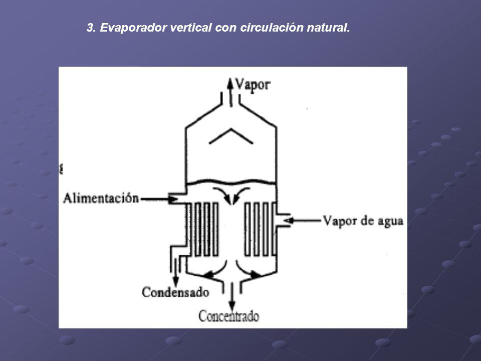 3. Evaporador vertical con circulación natural.
