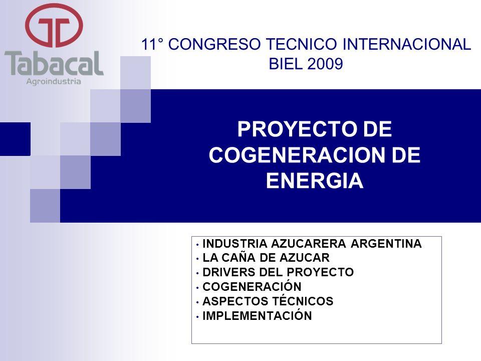 PROYECTO DE COGENERACION DE ENERGIA