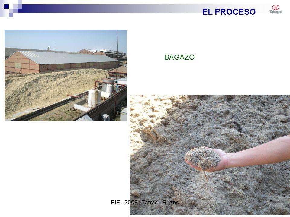 EL PROCESO BAGAZO BIEL 2009 - Torres - Briano 13