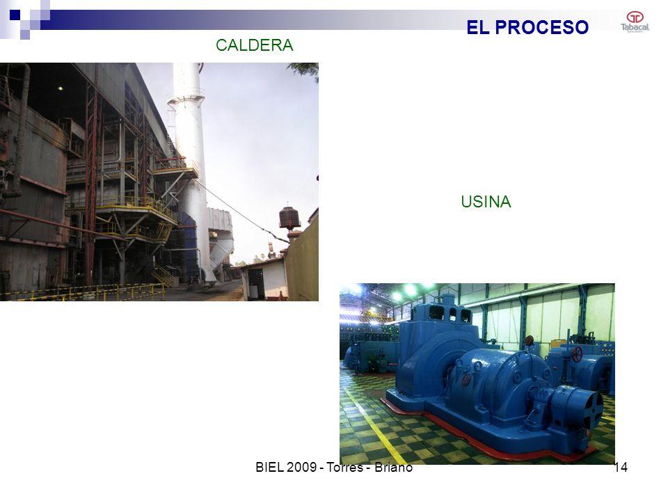 EL PROCESO CALDERA USINA BIEL 2009 - Torres - Briano 14