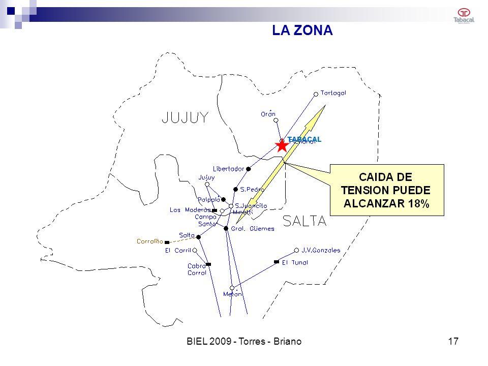 LA ZONA TABACAL BIEL 2009 - Torres - Briano 17