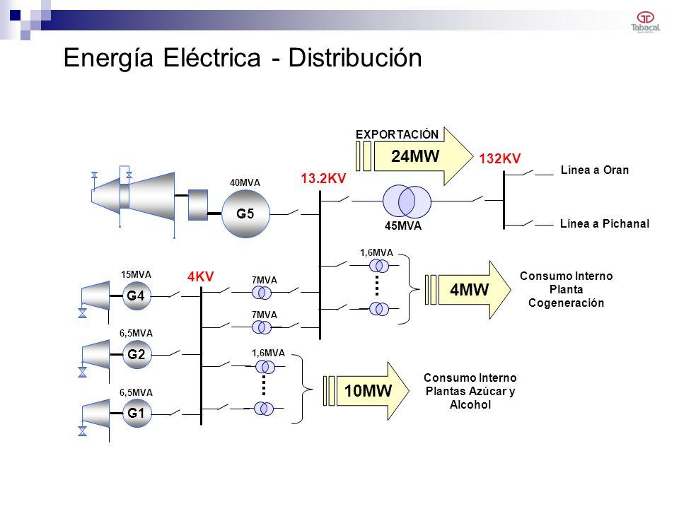 Energía Eléctrica - Distribución