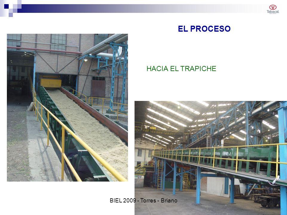 EL PROCESO HACIA EL TRAPICHE BIEL 2009 - Torres - Briano 9