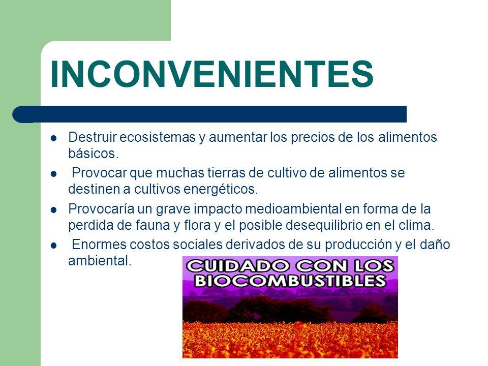 INCONVENIENTES Destruir ecosistemas y aumentar los precios de los alimentos básicos.