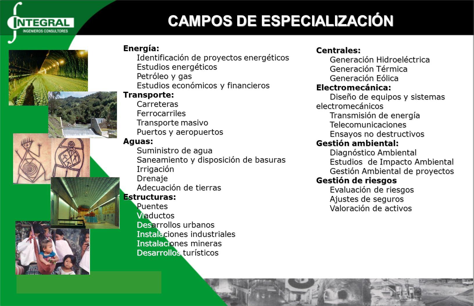 CAMPOS DE ESPECIALIZACIÓN