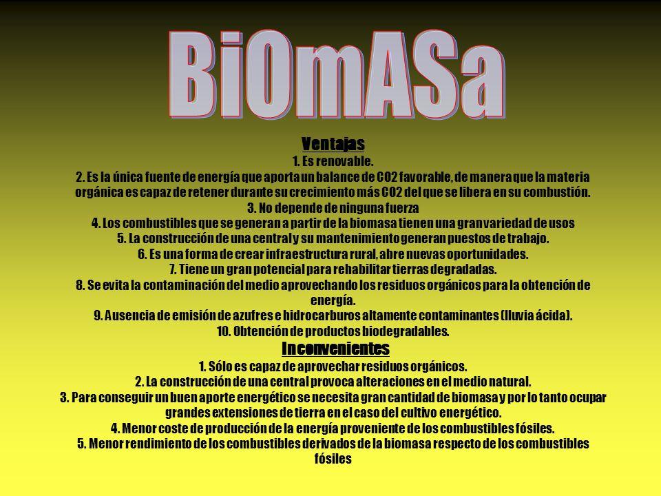 BiOmASa Ventajas 1. Es renovable.