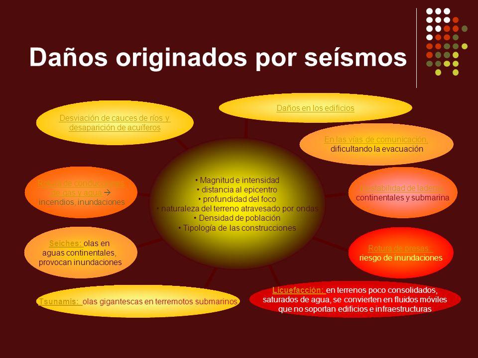 Daños originados por seísmos