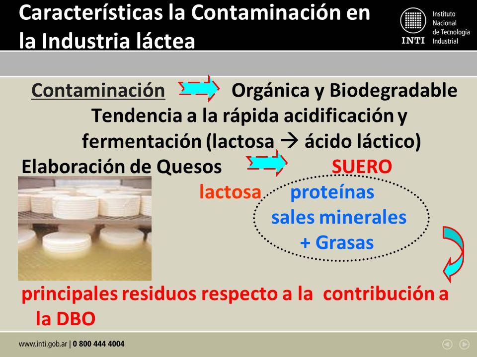 Características la Contaminación en la Industria láctea