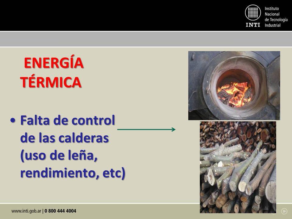 ENERGÍA TÉRMICA Falta de control de las calderas (uso de leña, rendimiento, etc)