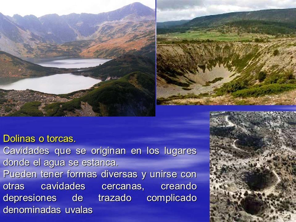 Dolinas o torcas. Cavidades que se originan en los lugares donde el agua se estanca.