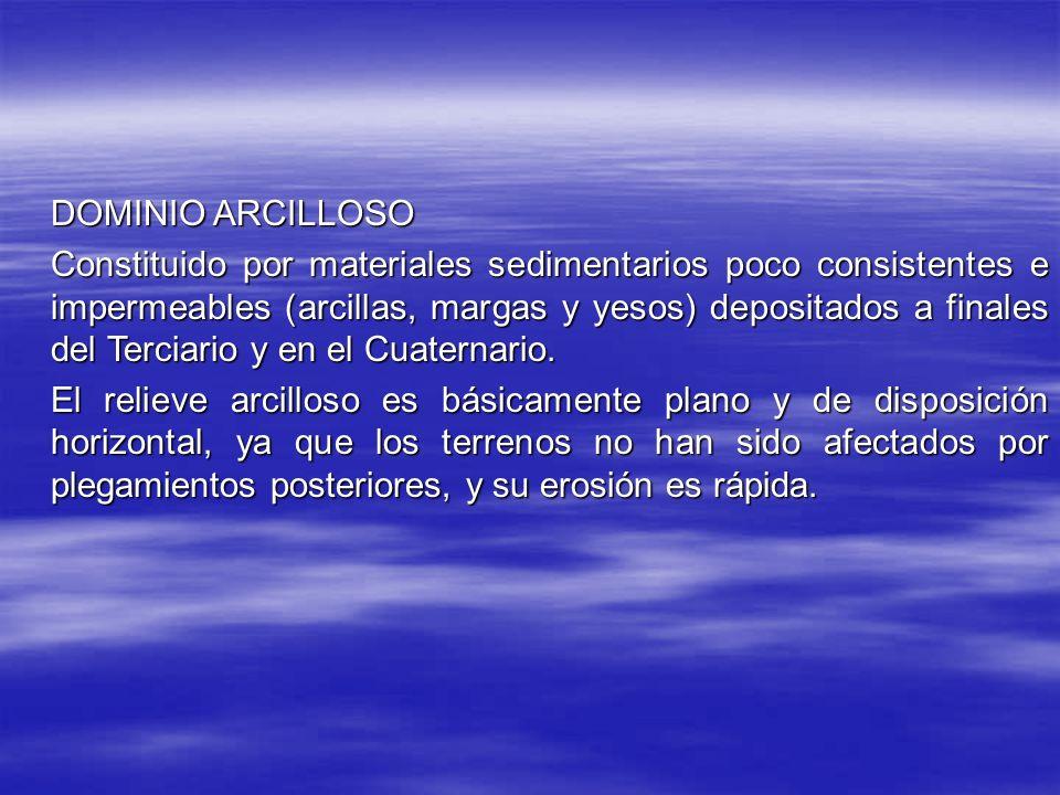 DOMINIO ARCILLOSO
