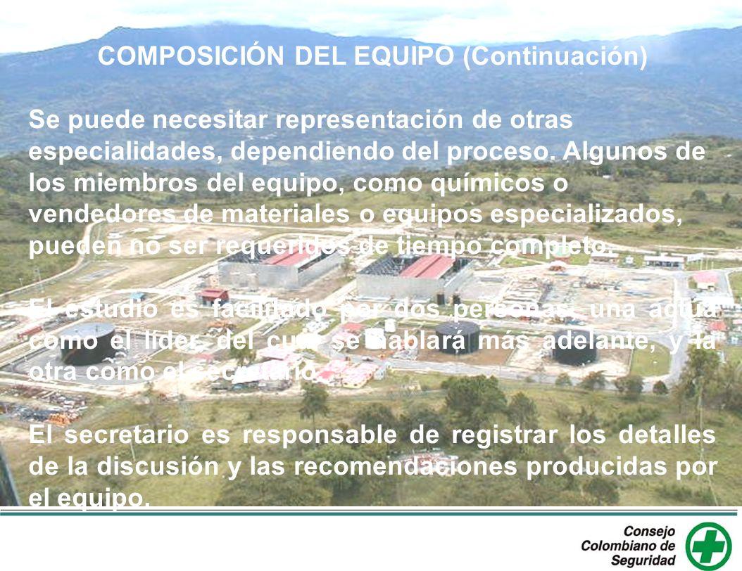COMPOSICIÓN DEL EQUIPO (Continuación)