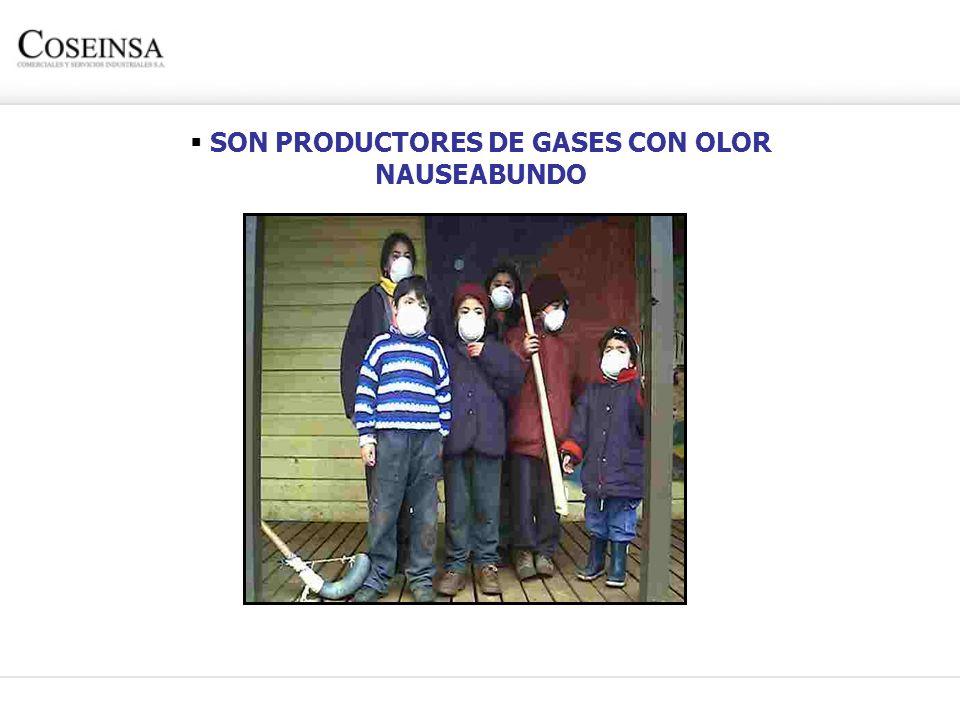 SON PRODUCTORES DE GASES CON OLOR NAUSEABUNDO