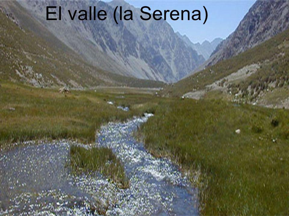 El valle (la Serena) El valle