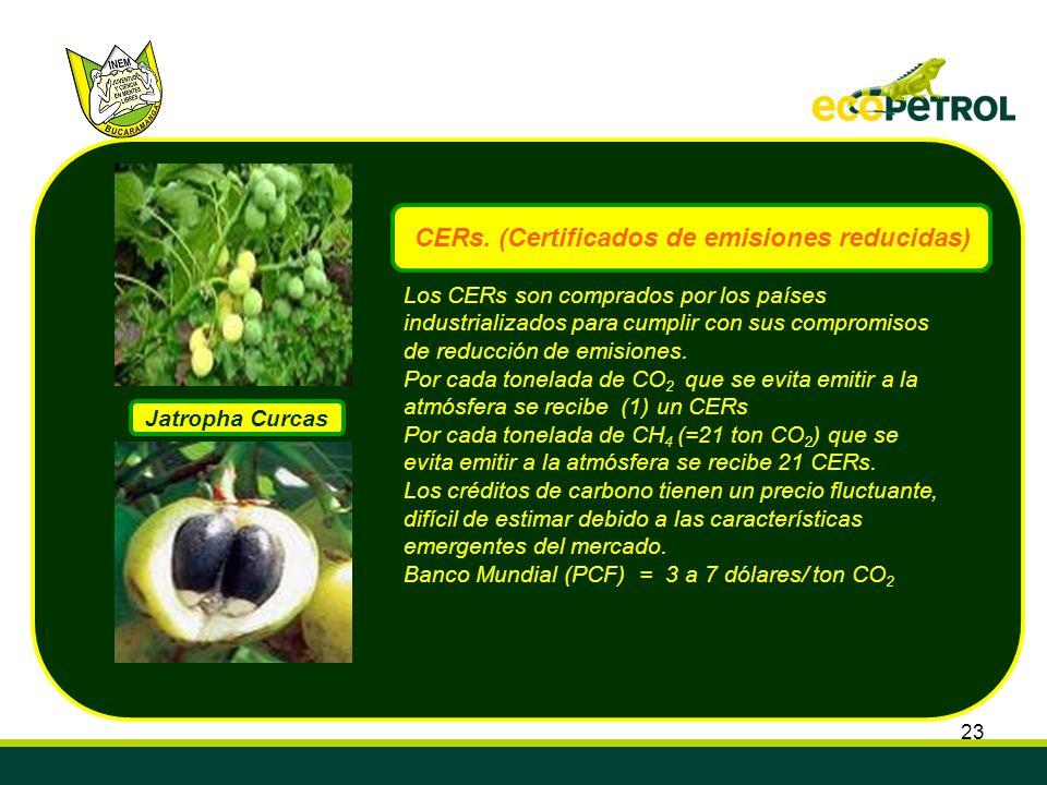 CERs. (Certificados de emisiones reducidas)