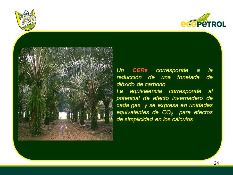 Un CERs corresponde a la reducción de una tonelada de dióxido de carbono