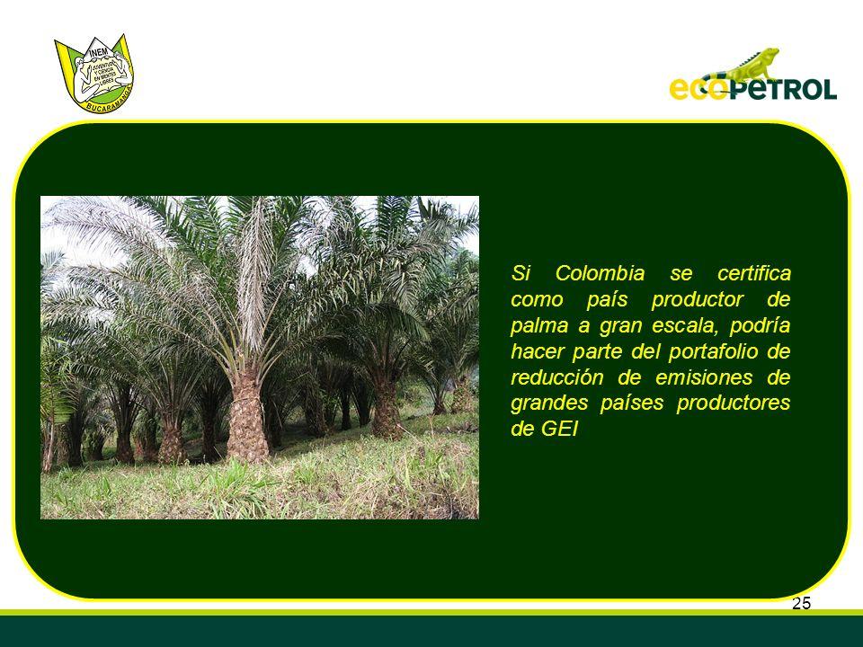 Si Colombia se certifica como país productor de palma a gran escala, podría hacer parte del portafolio de reducción de emisiones de grandes países productores de GEI