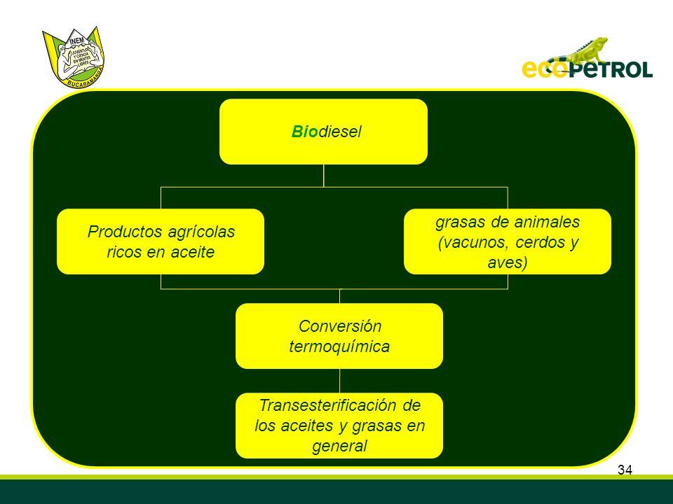 Productos agrícolas ricos en aceite