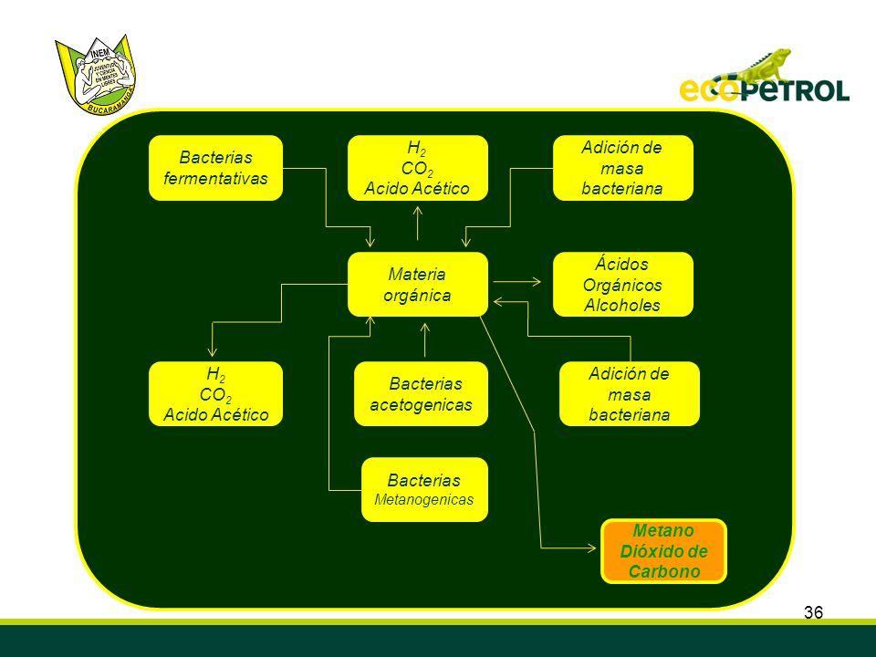 Metano Dióxido de Carbono