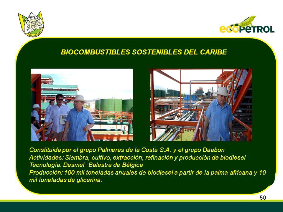 BIOCOMBUSTIBLES SOSTENIBLES DEL CARIBE