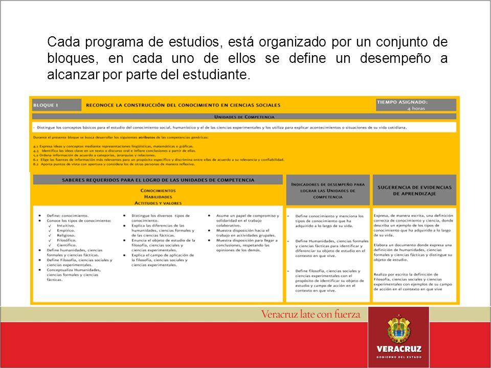 Cada programa de estudios, está organizado por un conjunto de bloques, en cada uno de ellos se define un desempeño a alcanzar por parte del estudiante.