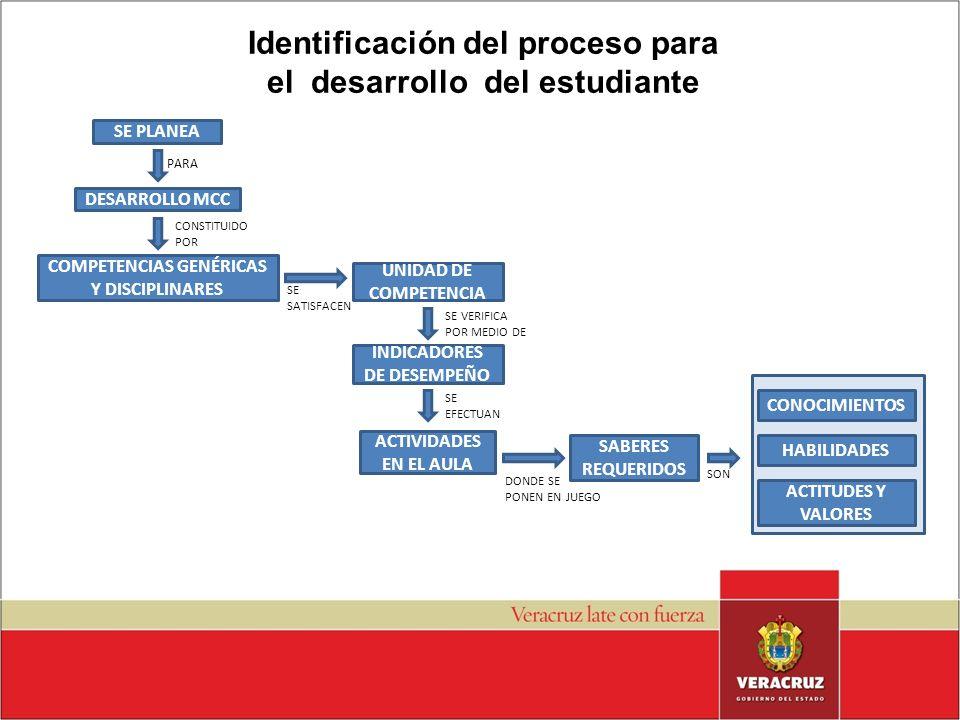 Identificación del proceso para el desarrollo del estudiante