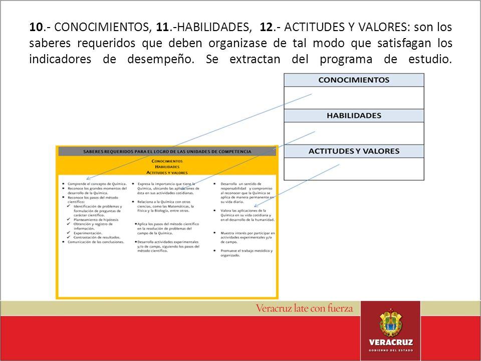 10. - CONOCIMIENTOS, 11. -HABILIDADES, 12