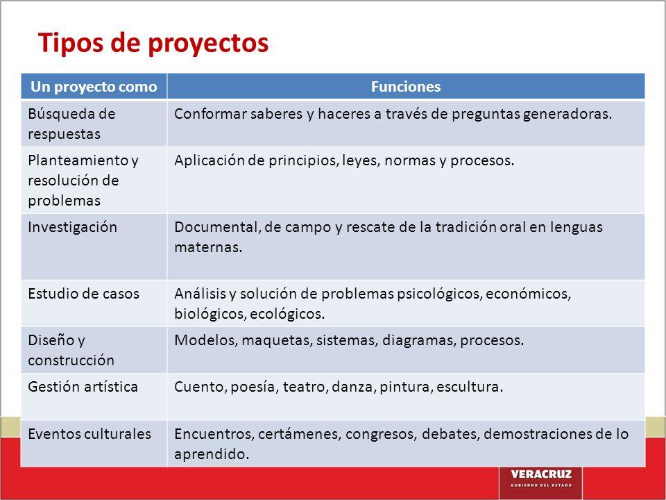 Tipos de proyectos Un proyecto como Funciones Búsqueda de respuestas