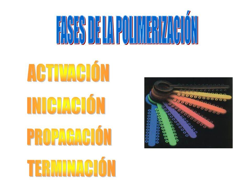 FASES DE LA POLIMERIZACIÓN