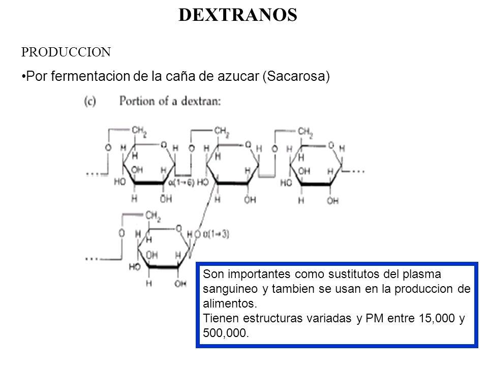 DEXTRANOS PRODUCCION Por fermentacion de la caña de azucar (Sacarosa)
