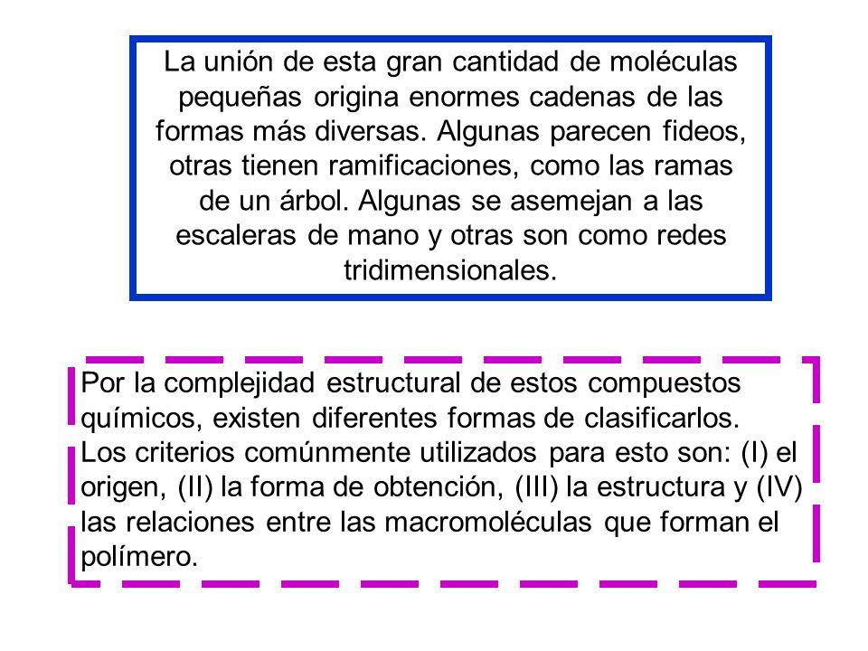 La unión de esta gran cantidad de moléculas pequeñas origina enormes cadenas de las formas más diversas. Algunas parecen fideos, otras tienen ramificaciones, como las ramas