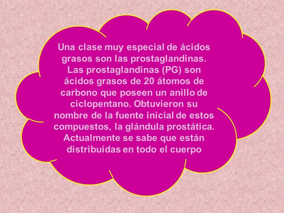 Una clase muy especial de ácidos grasos son las prostaglandinas