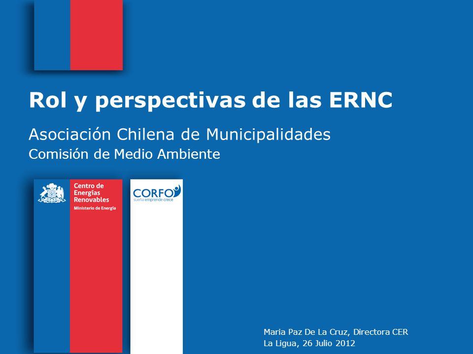 Rol y perspectivas de las ERNC
