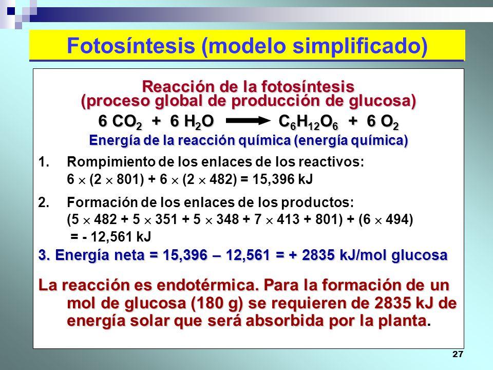 Fotosíntesis (modelo simplificado)