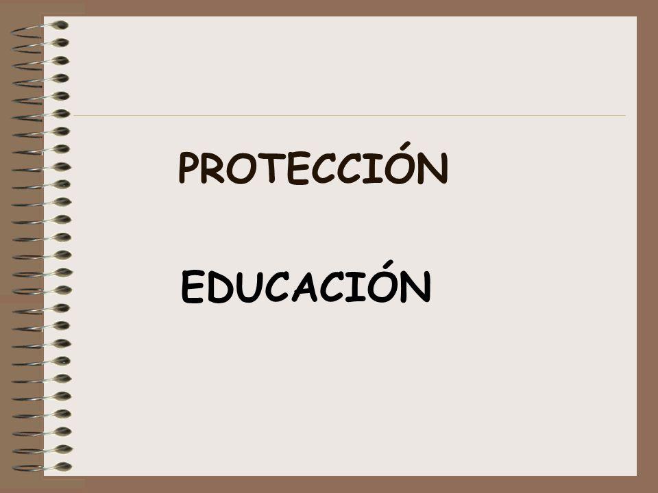 PROTECCIÓN EDUCACIÓN.