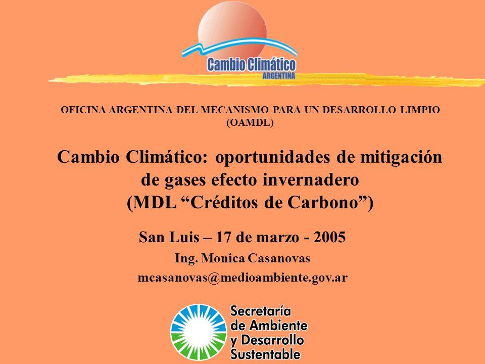 San Luis – 17 de marzo - 2005 Ing. Monica Casanovas