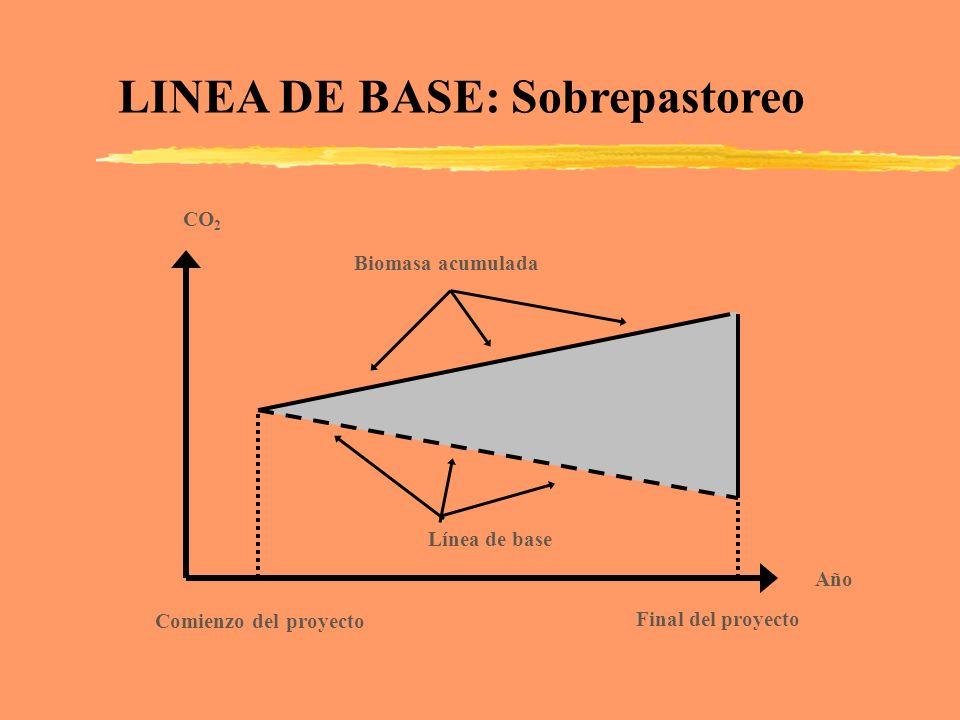 LINEA DE BASE: Sobrepastoreo