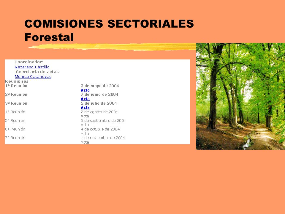 COMISIONES SECTORIALES Forestal