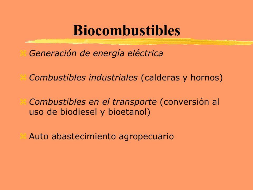 Biocombustibles Generación de energía eléctrica