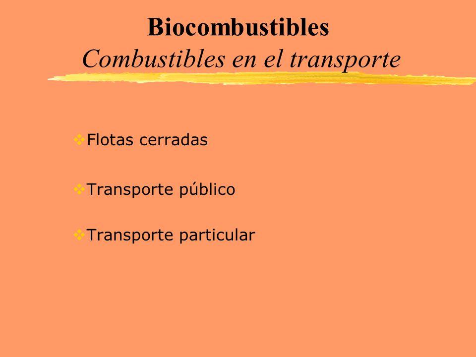 Biocombustibles Combustibles en el transporte