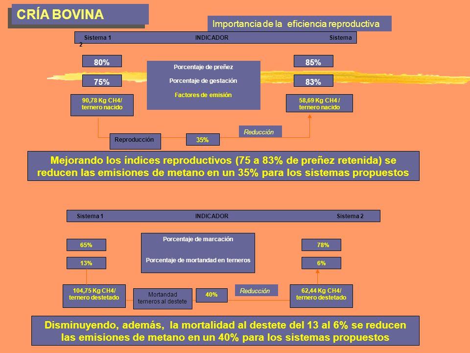 CRÍA BOVINA Importancia de la eficiencia reproductiva.