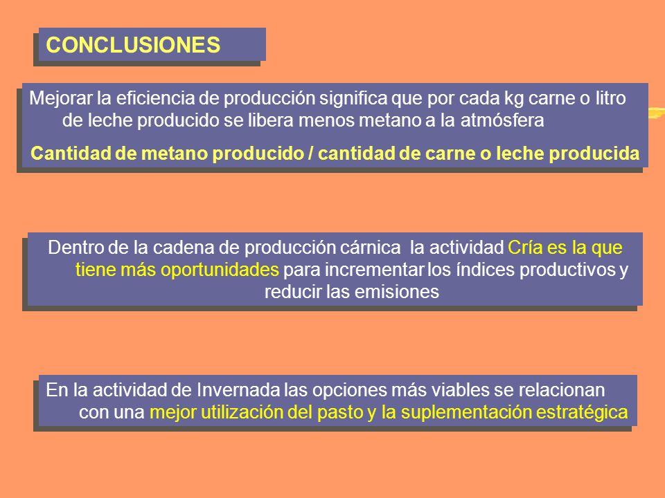 Cantidad de metano producido / cantidad de carne o leche producida