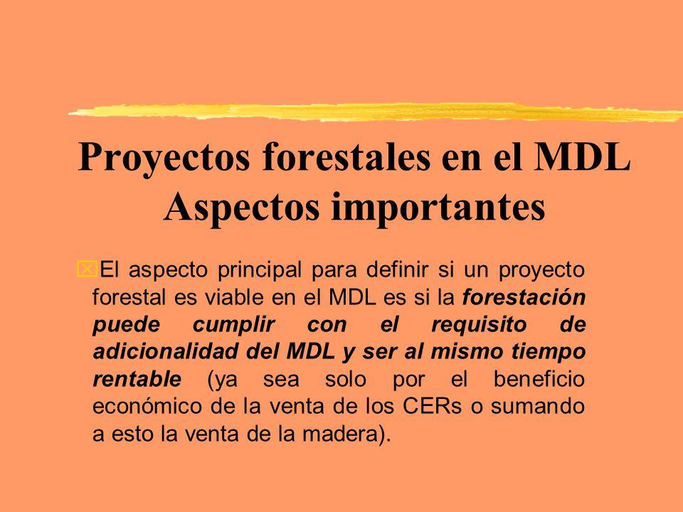 Proyectos forestales en el MDL Aspectos importantes
