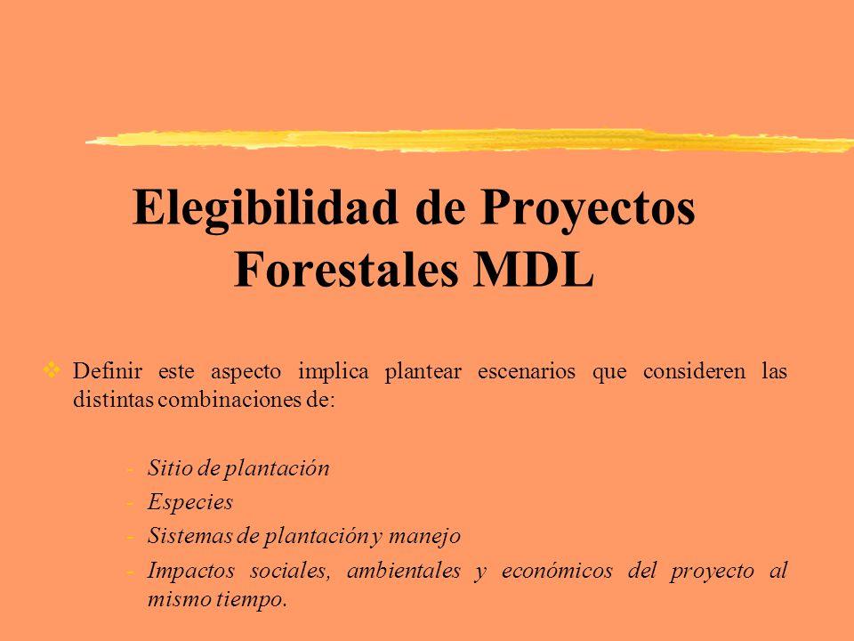Elegibilidad de Proyectos Forestales MDL