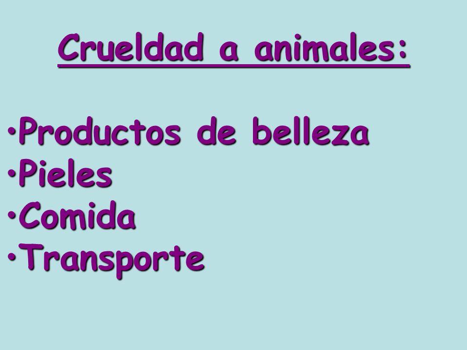 Crueldad a animales: Productos de belleza Pieles Comida Transporte