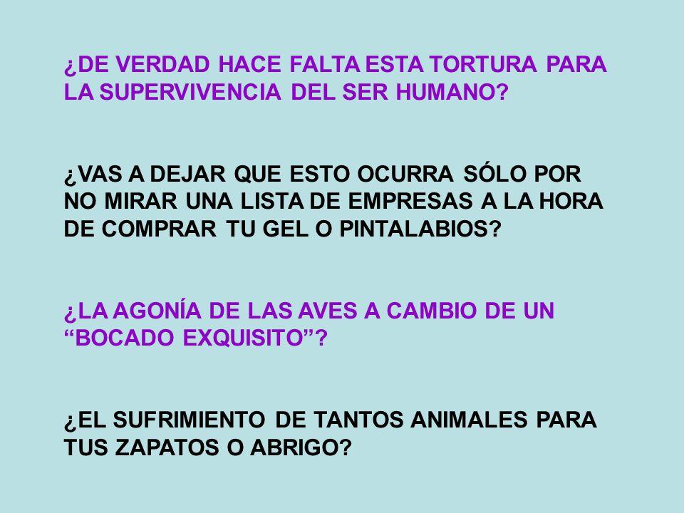 ¿DE VERDAD HACE FALTA ESTA TORTURA PARA LA SUPERVIVENCIA DEL SER HUMANO