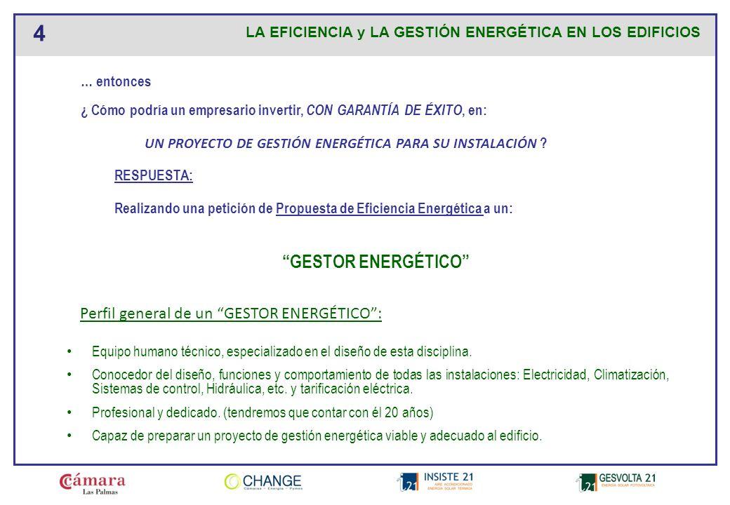 GESTOR ENERGÉTICO Perfil general de un GESTOR ENERGÉTICO :