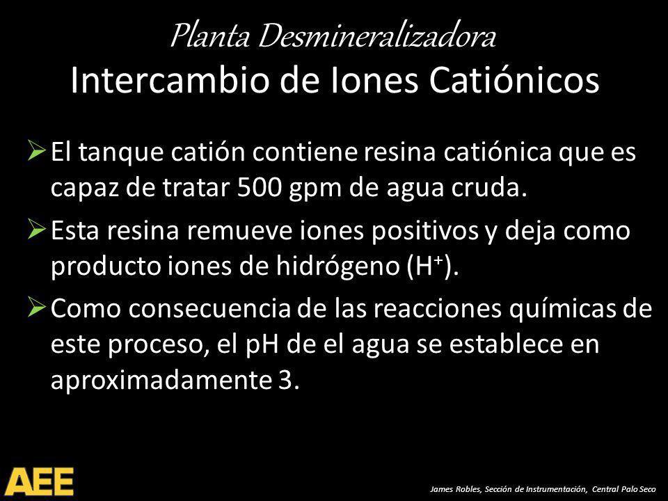 Intercambio de Iones Catiónicos